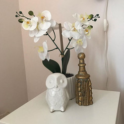 Simple #vignettes in neutral colors like