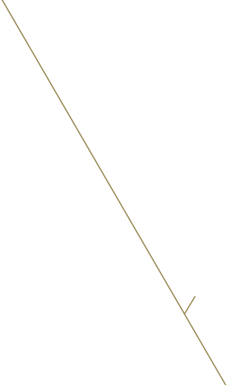 línea dorada