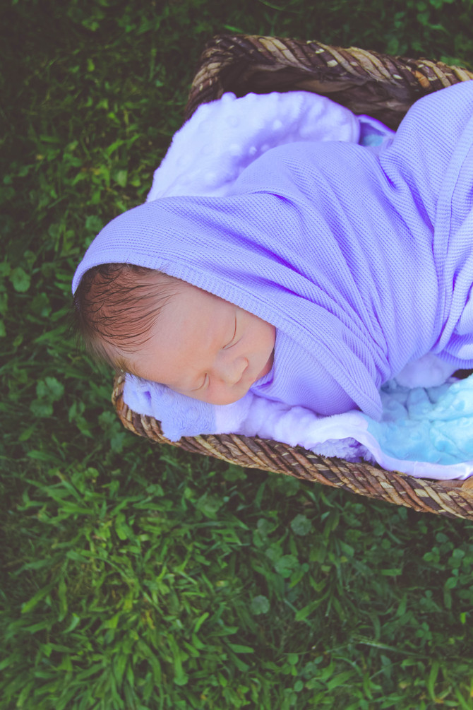 Chase // Newborn
