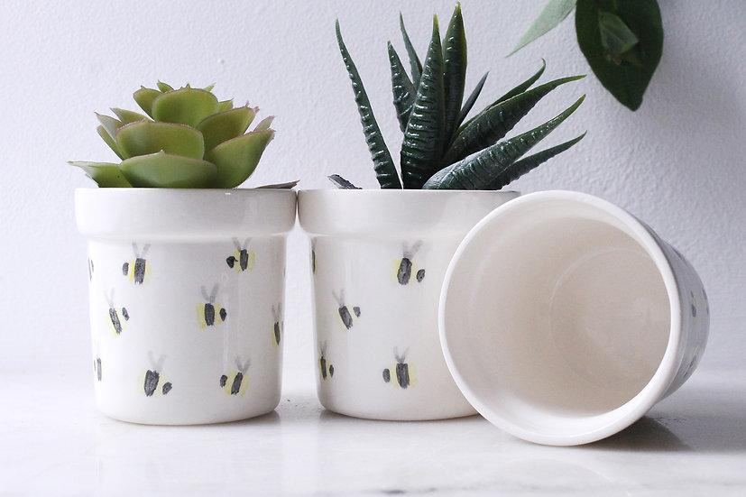 Bee Cactus Pot