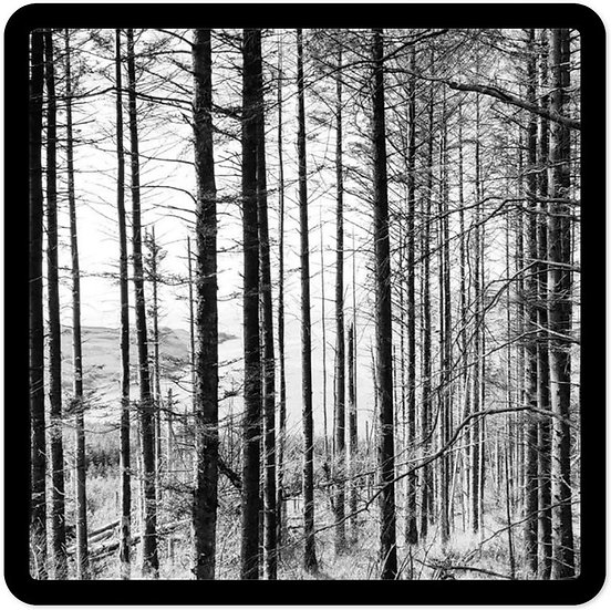 Forest Mono
