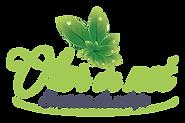logo OLOR de NET - 2019.png