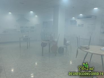 Olor de Net - Desinfeccio-6 COVID 19.png