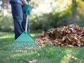 lawn work.jpg