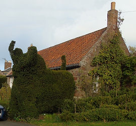 Stenton Village Topiary East Lothian