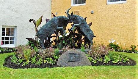 Goats of Haddington Haddington East Lothian