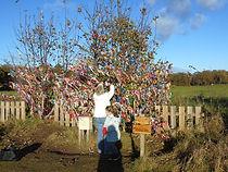 Archerfield Wishing Tree About East Lothian