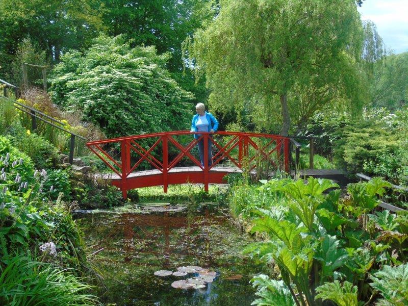 Teviot Water Gardens