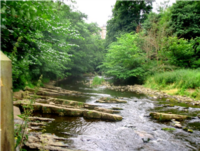 The Water of Leith and the source of the mineral water for St Bernard's Well and St George's Well