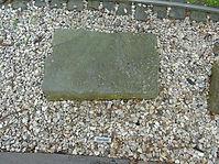 Shetland Stone
