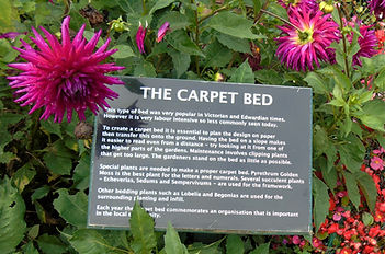 Carpet Bed Lodge Park North Berwick.JPG