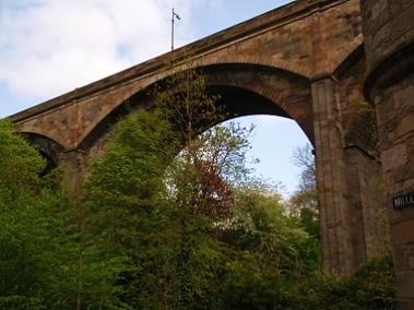 Dean Bridge looking up