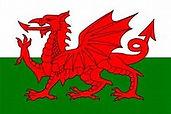 Welsh Team Flag