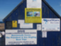 St Abbs Harbour, boat trips, diving, sno