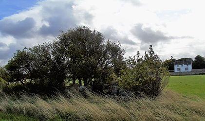 Kilspindie Castle Remains Aberlady East Lothian