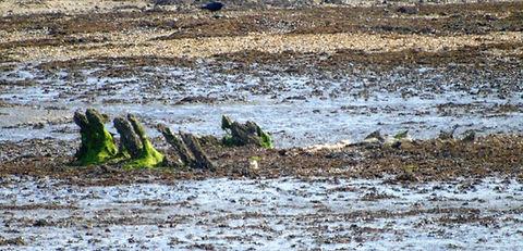 Aberlady Bay Ship wreck Aberlady East Lothian