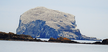 Bass Rock East Lothian