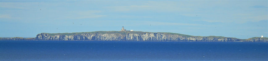 Isle of May Forth Boat Tours