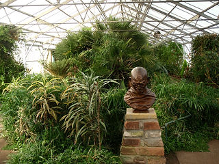 In the glasshouse you can see the bust of Ghandi and tropical plants.