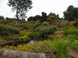 Chinese Hillside and Pond RBGE Botanic Gardens Edinburgh