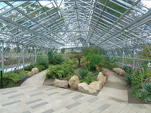 Saughton Park Rose Garden Glasshouse Edi