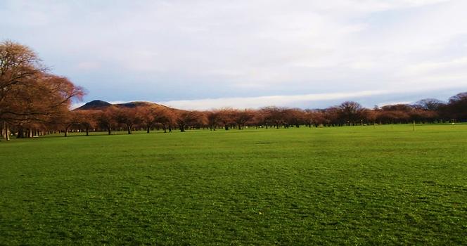 West Meadow Edinburgh