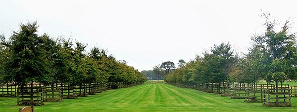 Archerfield Practice Area Royal Archers