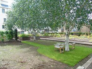 Holyrood Physic Garden Edinburgh