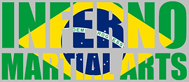Brazilian Flag LOGO for WIX.png