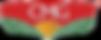 logo CMG.png