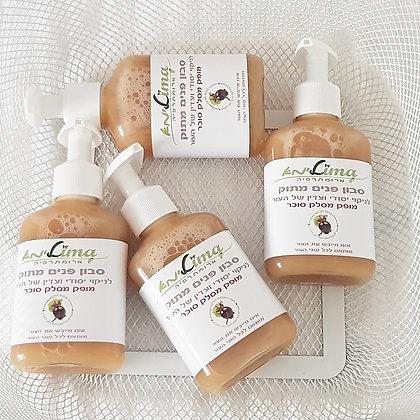 סבון פנים מושלם לניקוי עדין ויעיל לכל סוגי העור