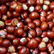 chestnuts-gfac3a495a_1920.jpg
