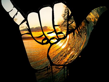 Surf lesson terminology