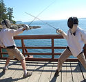 2013_fencing_sea_at_canoe_island_french_