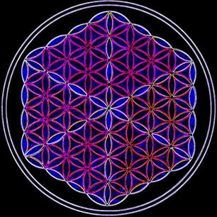 flower of life electro1.jpg