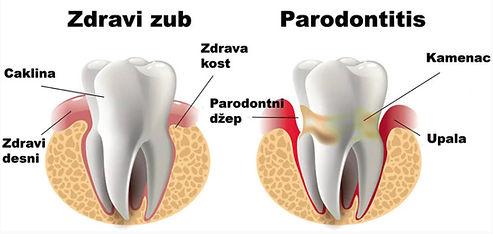 periodontology-2.jpg