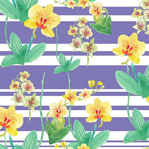 Yellow Orchid stripe