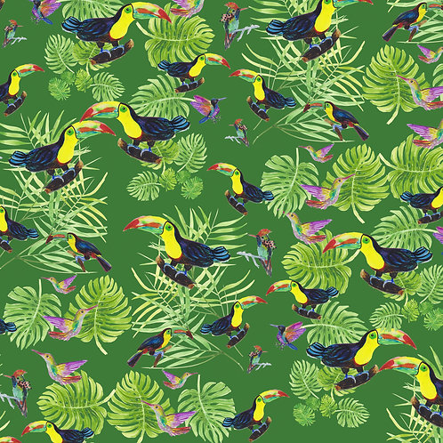 Toucans and Hummingbirds