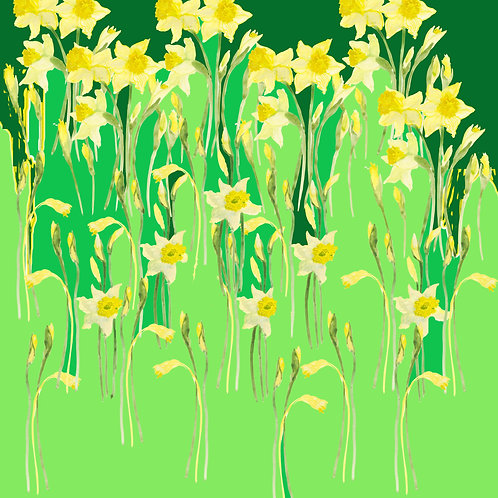 Daffodils in green