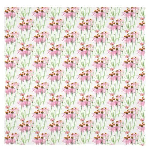 Echinacia Garden
