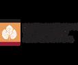 logo-head (1).png