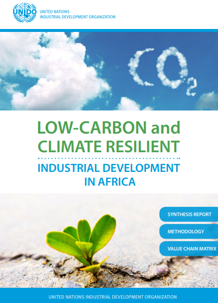 UNIDO Low Carbon and Climate Resilient Industry