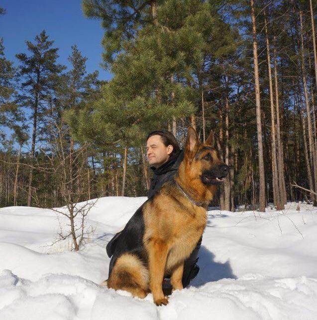 Сознание животных и человека