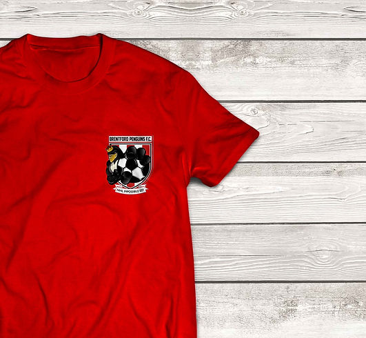 T-Shirt%2520MockUp_Front_edited_edited.j