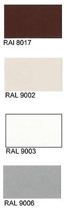 RAL-cvet-5.jpg