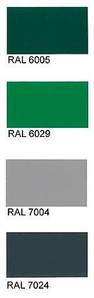 RAL-cvet-4.jpg