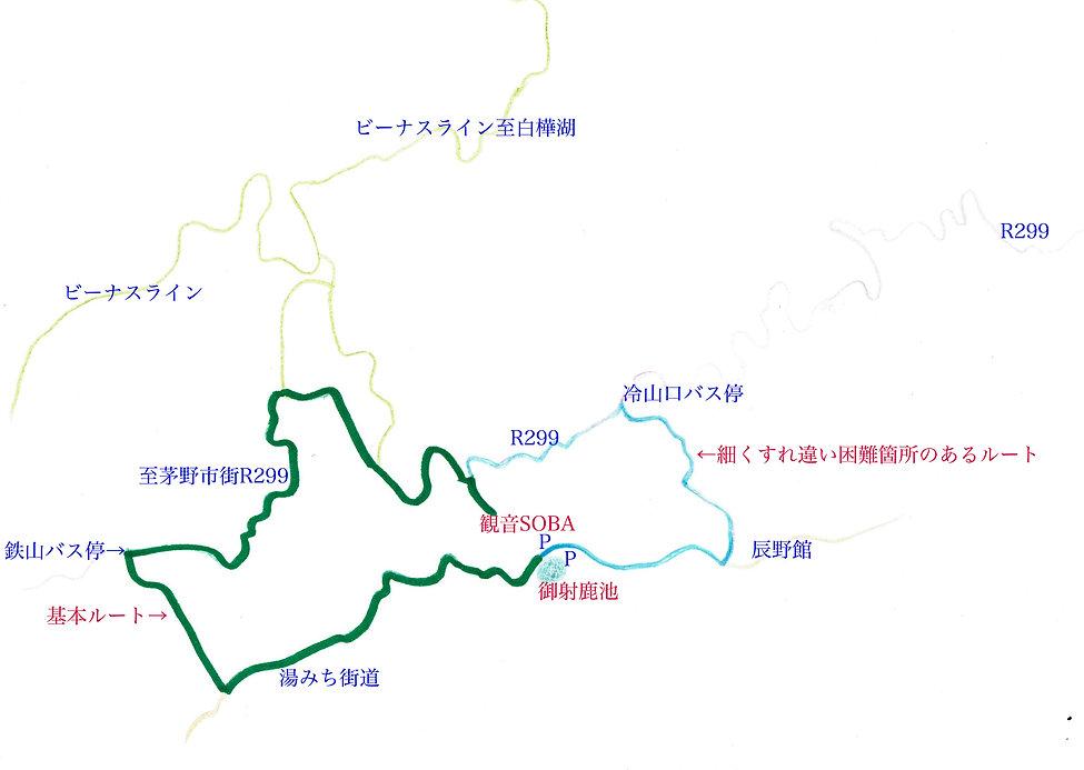 mishakaroot5.jpg