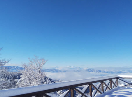 今シーズン初の積雪です