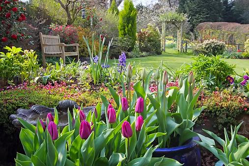 springtime-in-english-domestic-garden--1