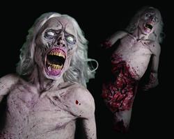 Die Zombie Die